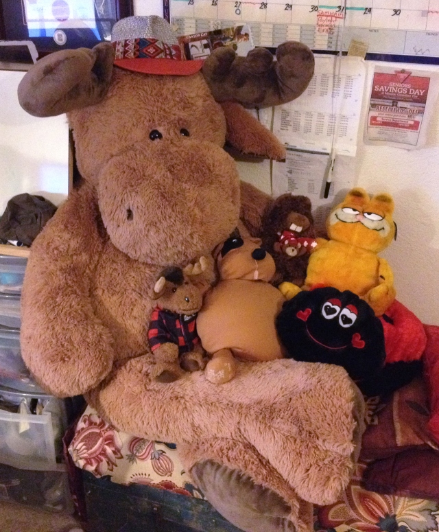 The household: Myrtle Moose, Mini Myrtle, Odie, Garfie, Hartz, and Chip (with his little hug-buddy)