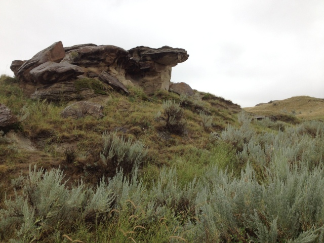 Fallen hoodoo capstones and one impressive cantilever