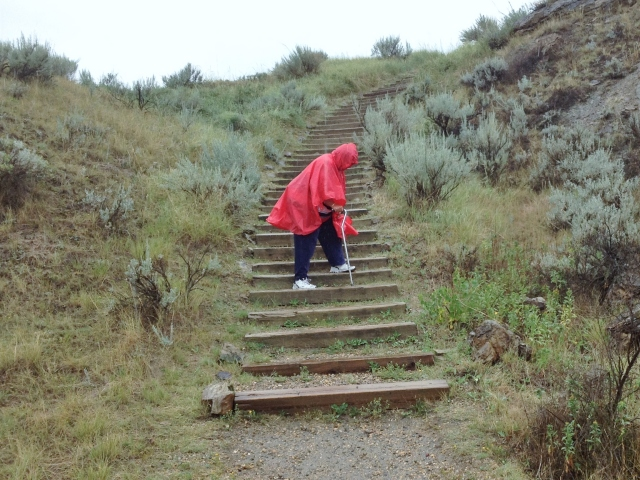 Hobbit trudges down the hill, in the rain ... no splats this time