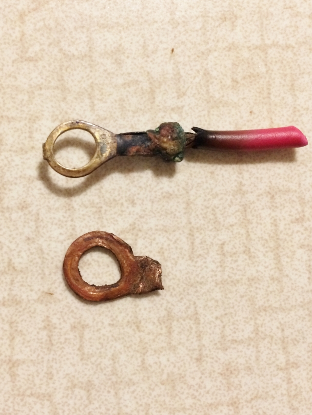 Ring connectors, lightly fried