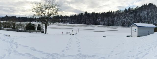 Widderlake - frozen over