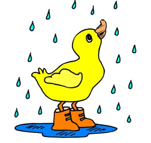 This wee duckling is a lot happier about the rain than I am, but thanks Clip-art for the cute image 😊